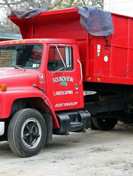 1988 – 1989 International s1600 series (more precisely S1654) service Repair manual